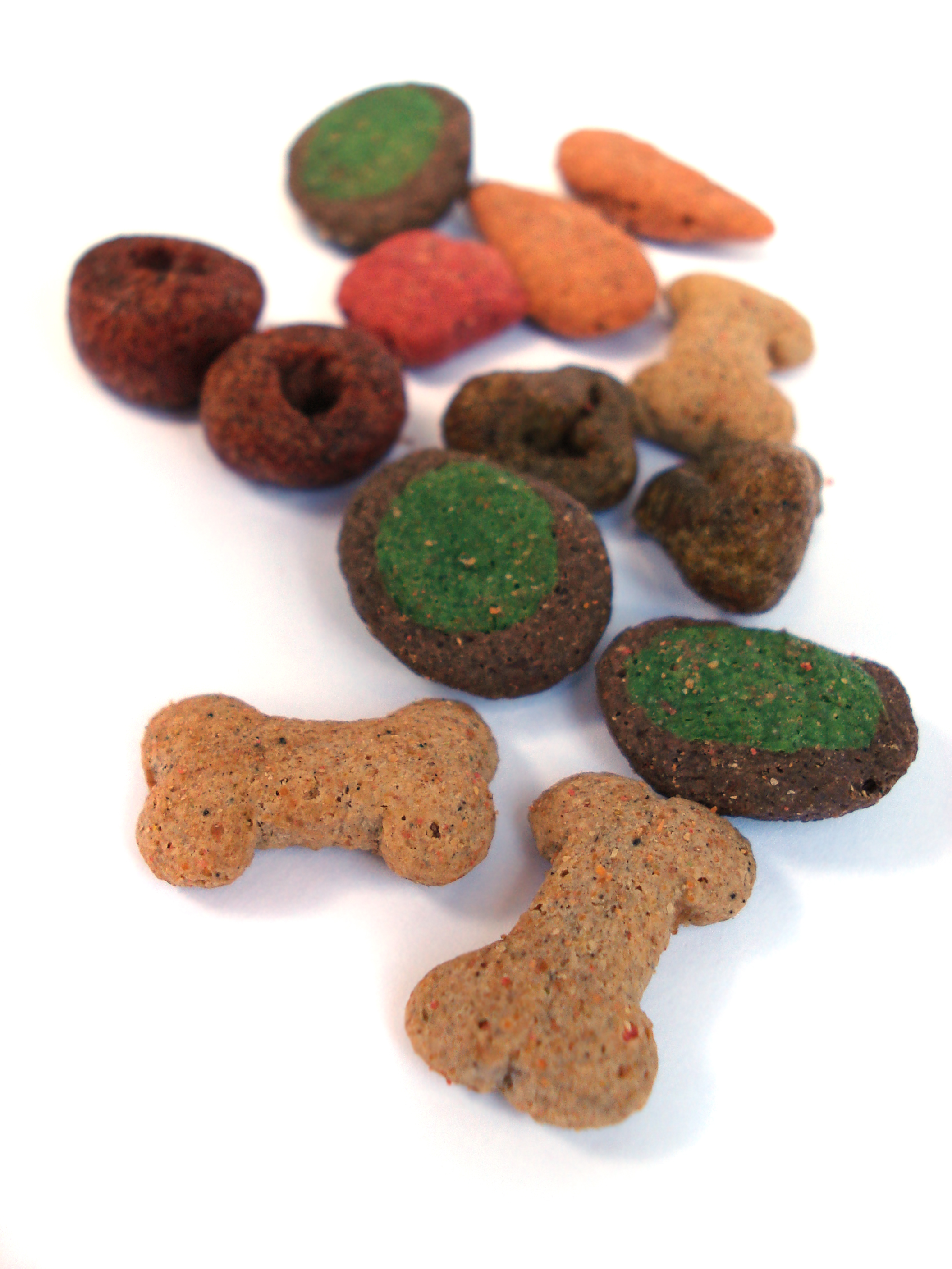 dog food samples
